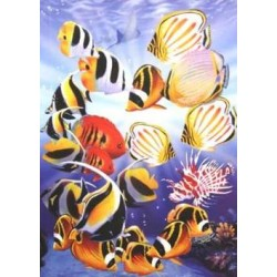 Puzzle Tropické rybky