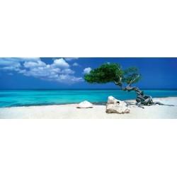 Puzzle Strom na pláži - PANORAMATICKÉ PUZZLE