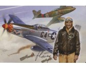 Puzzle P-51 D Mustang