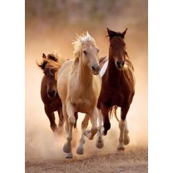 Puzzle Běžící koně