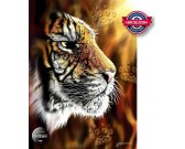 Puzzle Tygr
