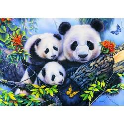 Puzzle Pandí rodin