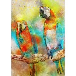 Puzzle Papoušci