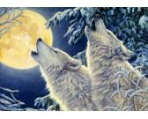 Puzzle Svit měsíce