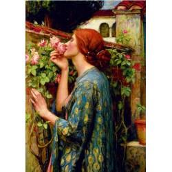 Puzzle Duše růže
