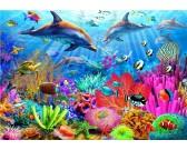 Puzzle Delfíní korálový útes