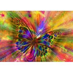 Puzzle Barevný motýl