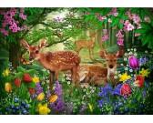 Puzzle Duch jara