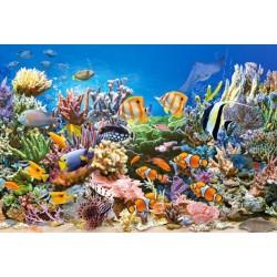 Puzzle Barvy oceánu - DĚTSKÉ PUZZLE