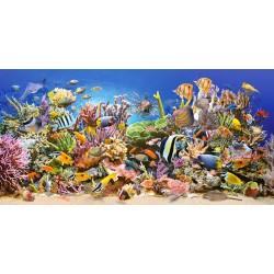 Puzzle Podmořský život - PANORAMATICKÉ PUZZLE