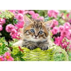 Puzzle Koťátko v zahradě - DĚTSKÉ PUZZLE