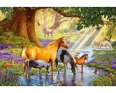 Puzzle Koně v potoce