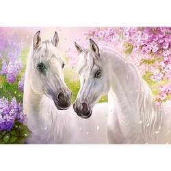 Puzzle Koní romantika