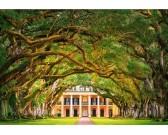 Puzzle Stará stromová alej