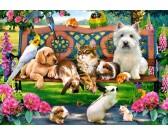 Puzzle Zvířátka v parku