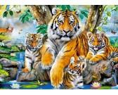 Puzzle Tygři u vodopádu - DĚTSKÉ PUZZLE