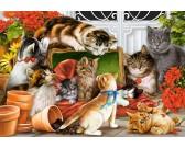 Puzzle Hrající si koťátka