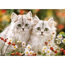 Puzzle Perská koťata - DĚTSKÉ PUZZLE