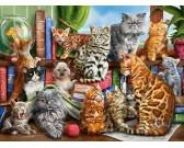 Puzzle Kočičí dům