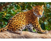 Puzzle Malý jaguár - DĚTSKÉ PUZZLE