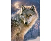 Puzzle Majestátný vlk