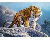 Puzzle Tygr na skále