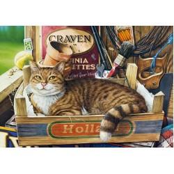 Puzzle Kočka v krabici