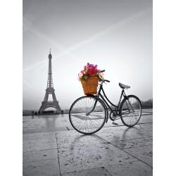 Puzzle Romantická promenáda v Paříži