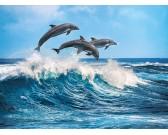 Puzzle Tři delfíni