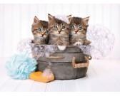 Puzzle Tři koťátka
