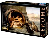 Puzzle Diogenes