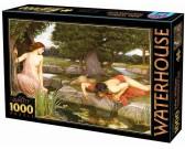 Puzzle Echo a Narcius