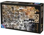 Puzzle Koláž - kočky