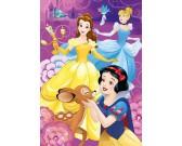 Puzzle Duhové princezny - DĚTSKÉ PUZZLE