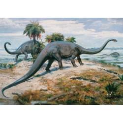 Puzzle Diplodocus