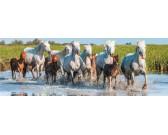 Puzzle Stádo koní - DĚTSKÉ PUZZLE