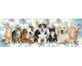 Puzzle Psi a kočky - DĚTSKÉ PUZZLE
