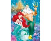 Puzzle Ariel - DIAMOND PUZZLE