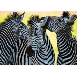 Puzzle Tři zebry