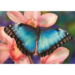 Puzzle Motýl na orchideji