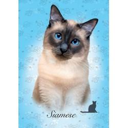 Puzzle Siamská kočka - MINI PUZZLE