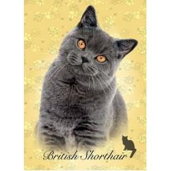 Puzzle Britská kočka - MINI PUZZLE