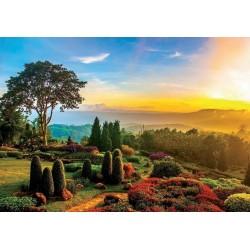 Puzzle Nádherná zahrada