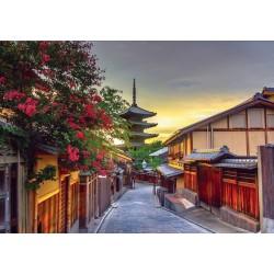 Puzzle Pagoda Kyoto, Japonsko