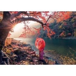 Puzzle Řeka Katsura, Japonsko