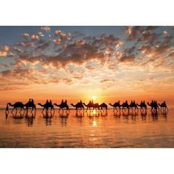 Puzzle Zlatý západ slunce, Austrálie