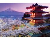 Puzzle Fuji, Japonsko