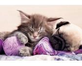 Puzzle Spící kočička