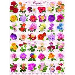 Puzzle Růže