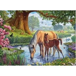 Puzzle Koně v potoku